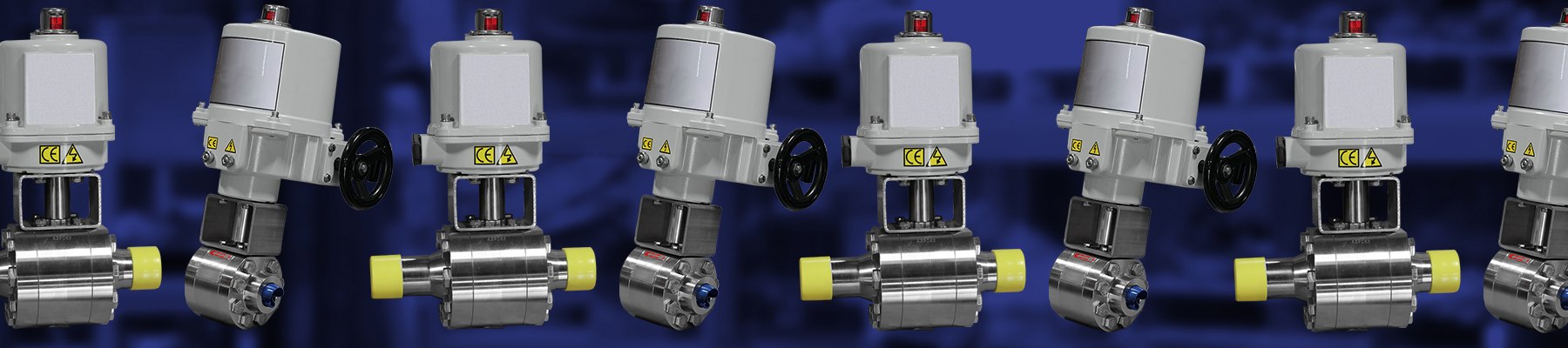 Electric Ball Valves w/ SS Kits