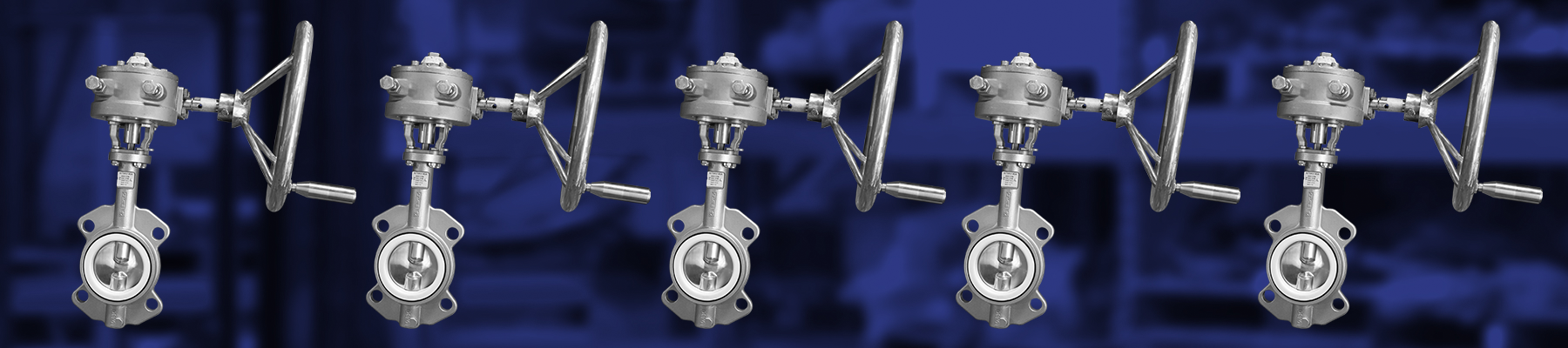 SS Gear Operated Butterfly Valve
